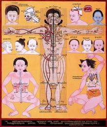 Cranial Physiognomy
