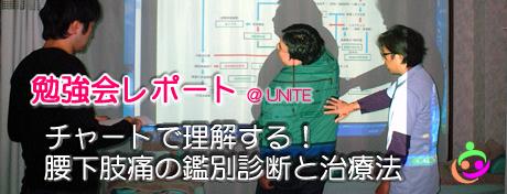 unitereport